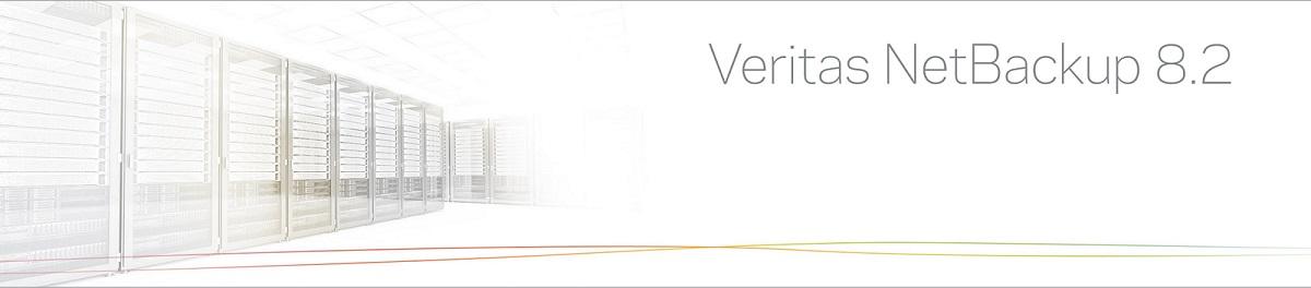 Veritas NetBackup 8.2